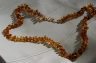 Amber Necklaces ANECK01